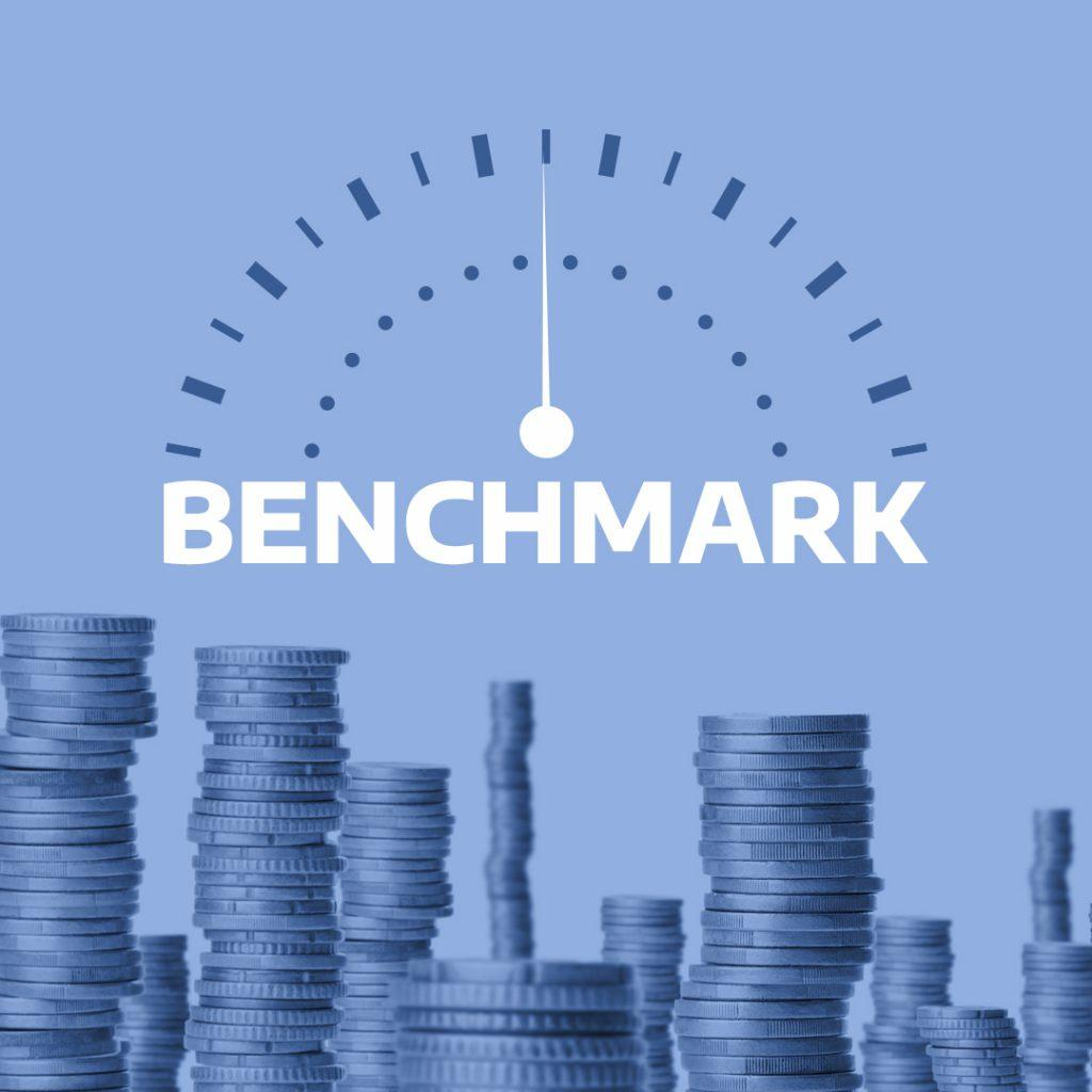 Use 'benchmark' in a Sentence